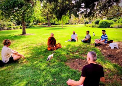 People sitting in a park meditating